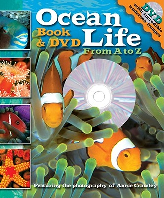 Ocean Life By Stierle, Cynthia