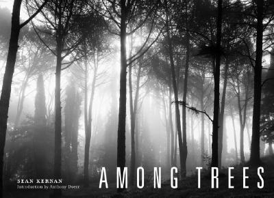 Among Trees By Kernan, Sean